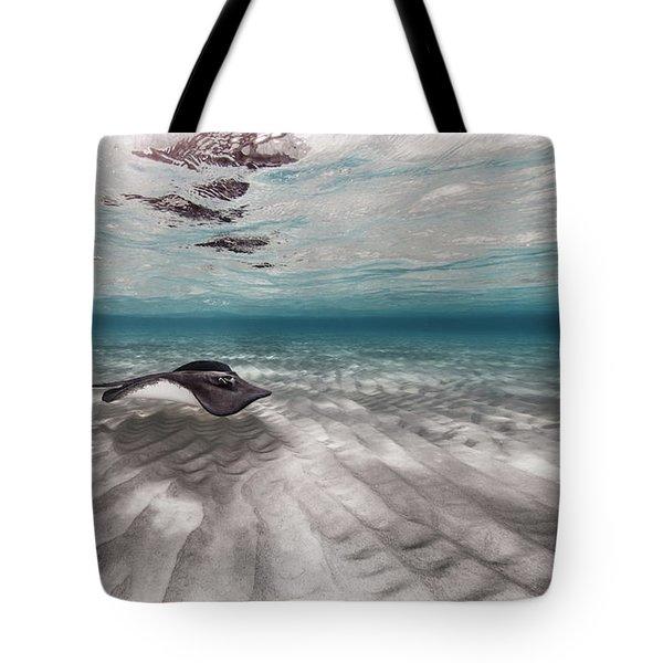 Stingray Across The Sand Tote Bag