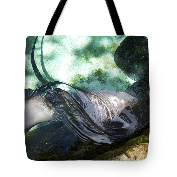 Tote Bag featuring the photograph Stingray Wave by Francesca Mackenney
