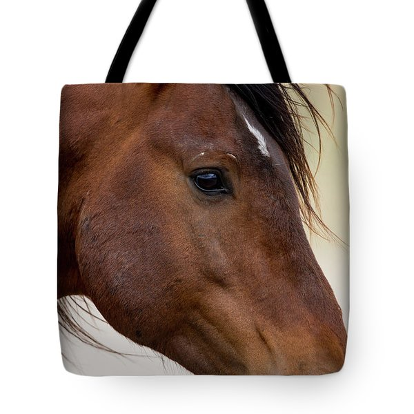 Eye To The Soul Tote Bag