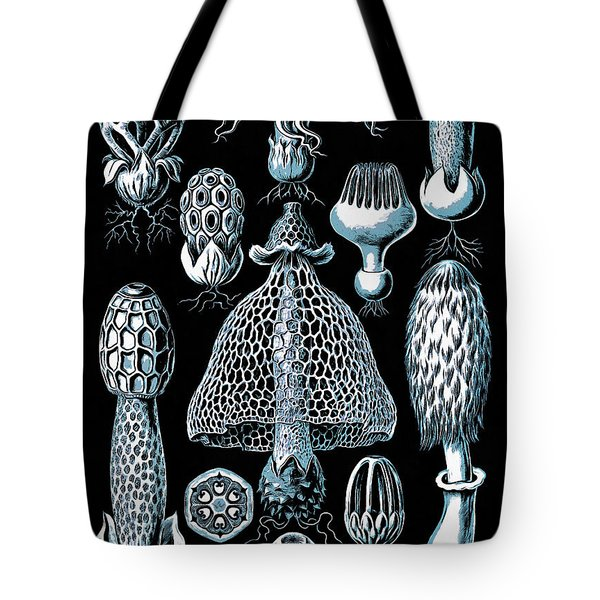 Tote Bag featuring the drawing Stinkhorn Mushrooms Vintage Illustration by Edward Fielding