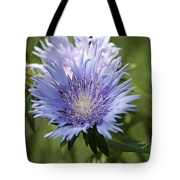 Stokes Aster 20120703_125a Tote Bag