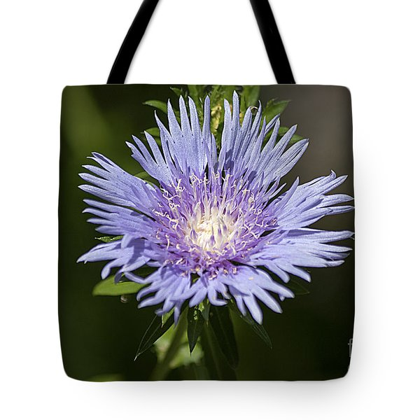 Stokes Aster 20120703_129a Tote Bag