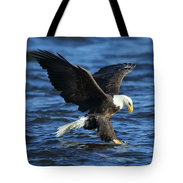 Tote Bag featuring the photograph Stolen Dinner by Coby Cooper