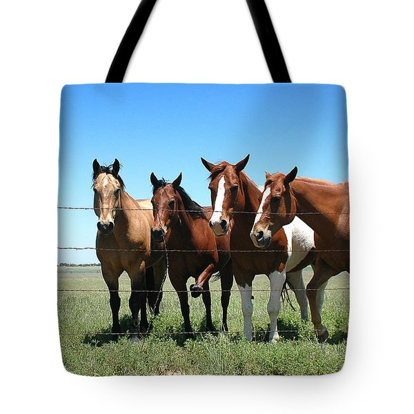 Stompin' Flies Tote Bag by Karen Slagle