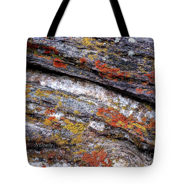 Stone And Lichen Tote Bag