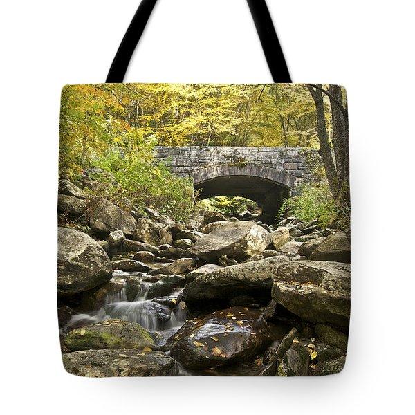 Stone Bridge 6063 Tote Bag by Michael Peychich