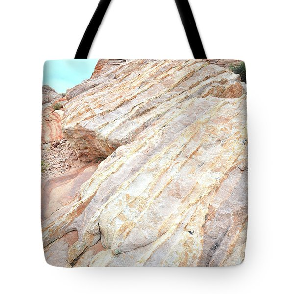 Tote Bag featuring the photograph Stone Feet In Valley Of Fire by Ray Mathis