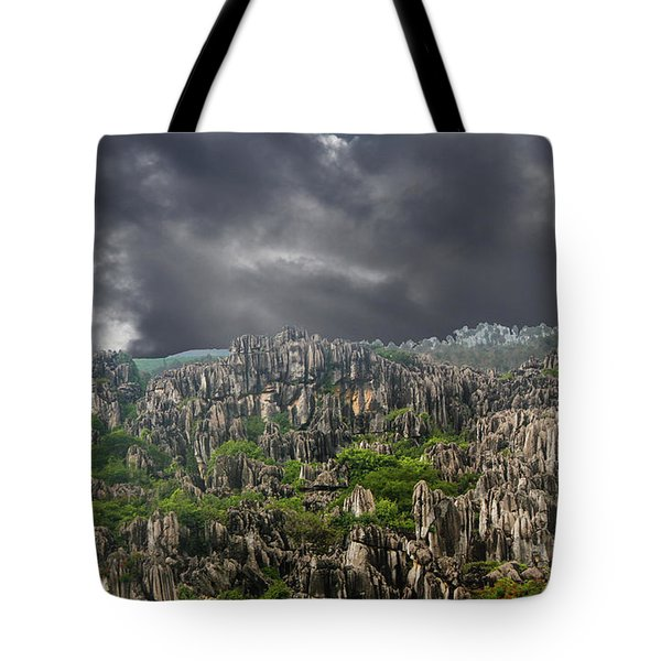Stone Forest 3 Tote Bag