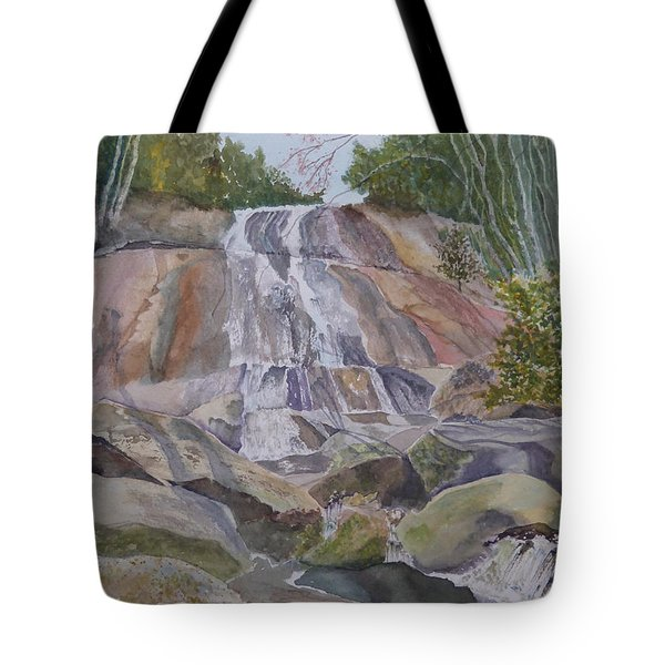 Tote Bag featuring the painting Stone Mountain Falls April 2013 by Joel Deutsch