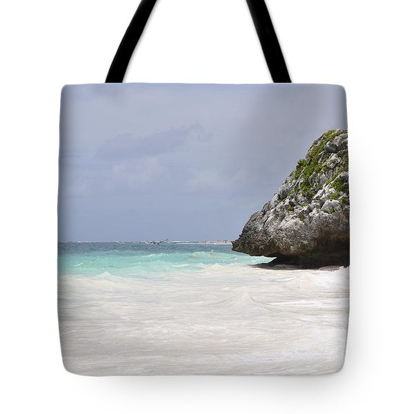 Stone Turtle Tote Bag by Glenn Gordon