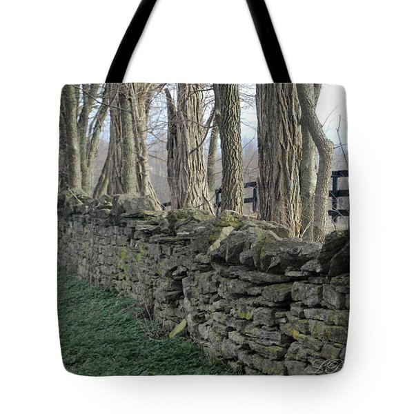 Tote Bag featuring the photograph Stone Wall by Linda Mesibov