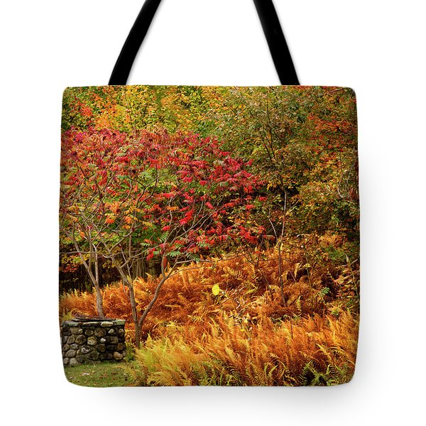 Stone Well Tote Bag