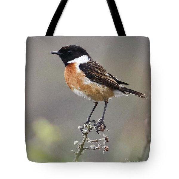 Stonechat Tote Bag by Terri Waters