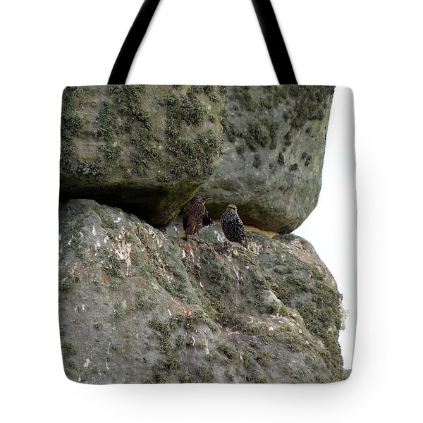Tote Bag featuring the photograph Stonehenge Birds by Francesca Mackenney