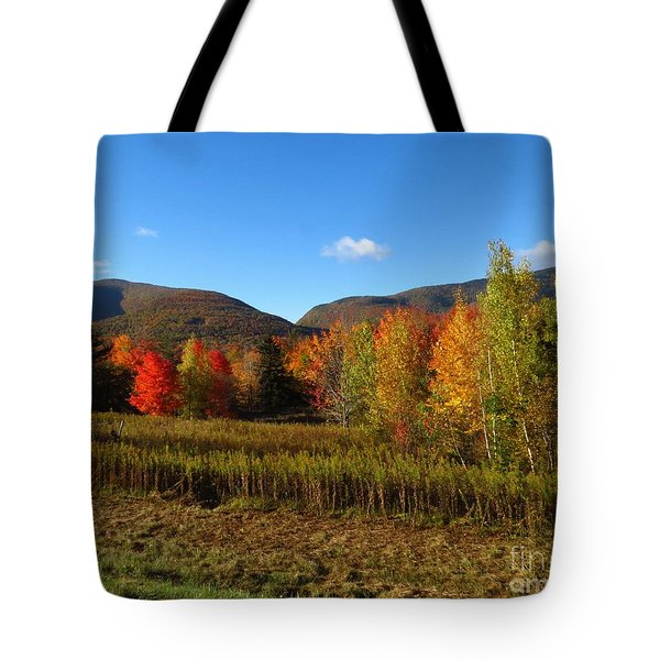 Stony Clove Tote Bag