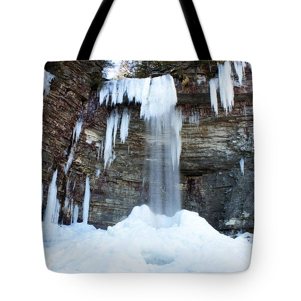 Stony Kill Falls In February #1 Tote Bag by Jeff Severson