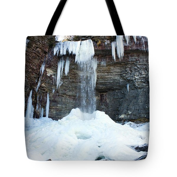 Stony Kill Falls In February #2 Tote Bag by Jeff Severson