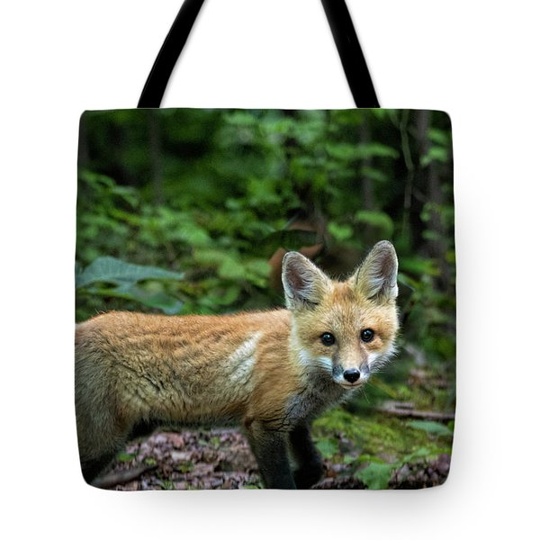Stop And Look Tote Bag