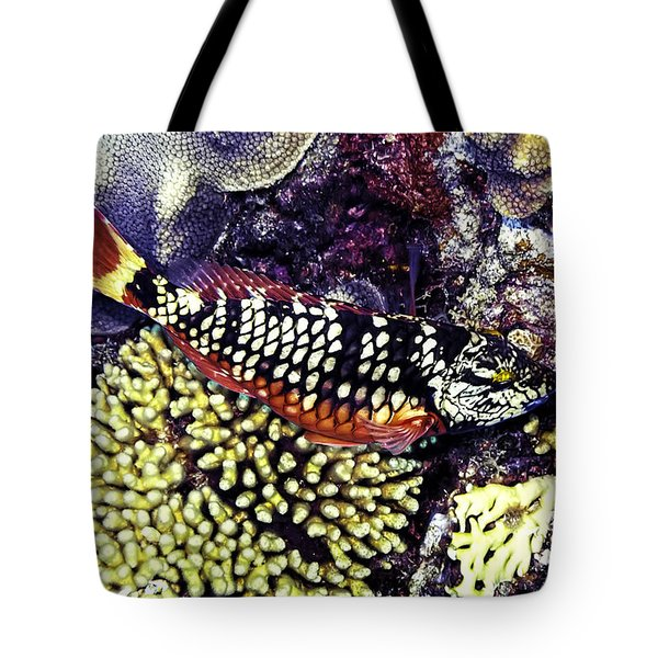 Stoplight Parrotfish Initial Phase Tote Bag by Perla Copernik