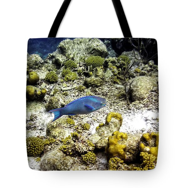 Stoplight Parrotfish  Tote Bag by Perla Copernik