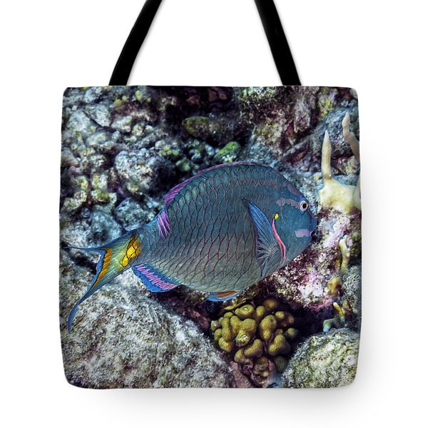 Stoplight Parrotfish Terminal Phase Tote Bag by Perla Copernik