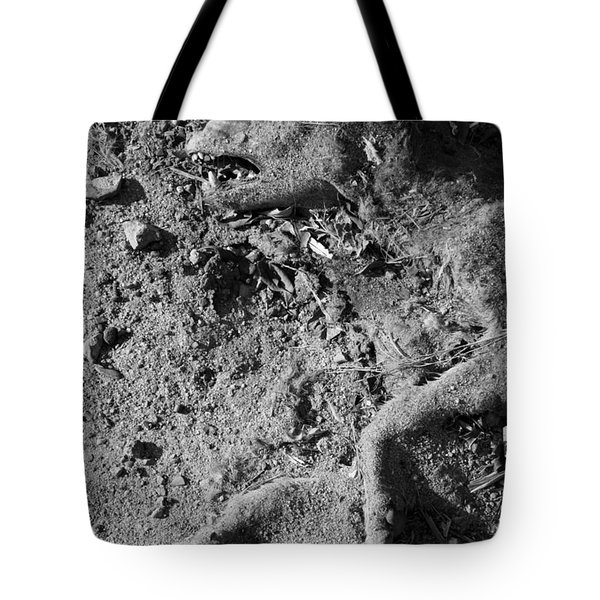 Tote Bag featuring the photograph Stopped Mid Track by Jez C Self
