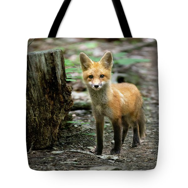 Stopped On The Trail Tote Bag