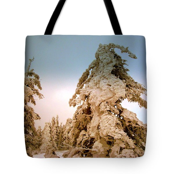 Stopped Wind Tote Bag