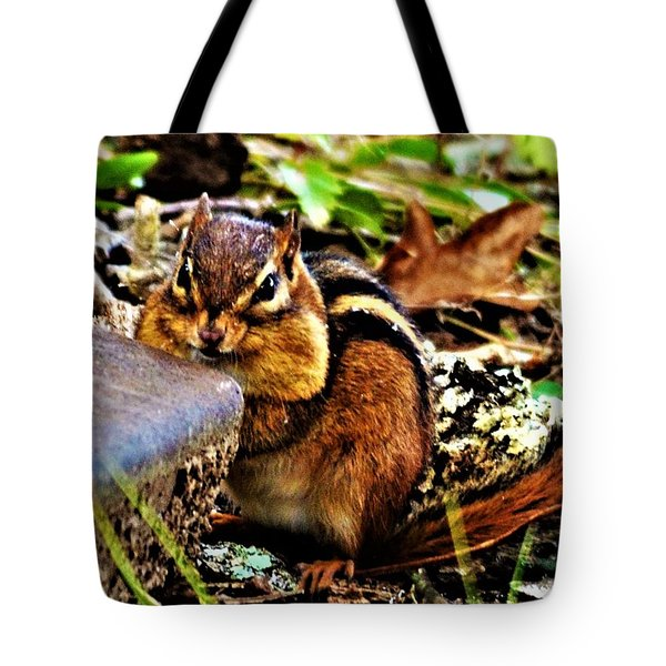 Storing For Winter Tote Bag