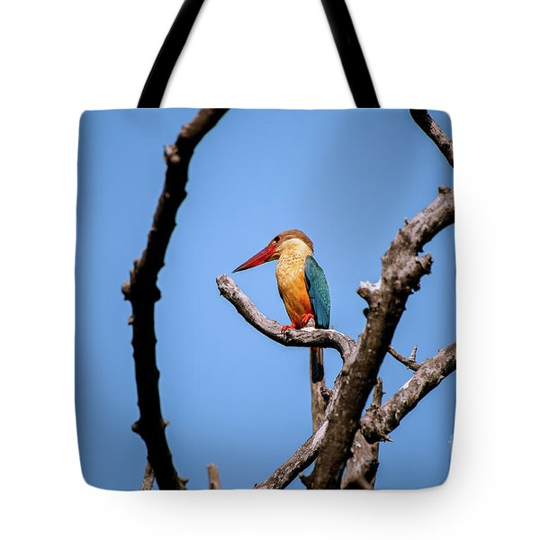 Stork-billed Kingfisher Tote Bag by Venura Herath