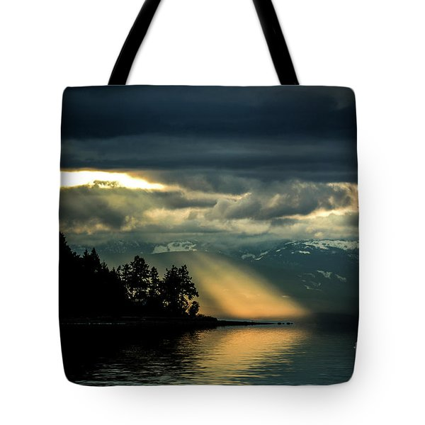 Storm 2 Tote Bag by Elaine Hunter