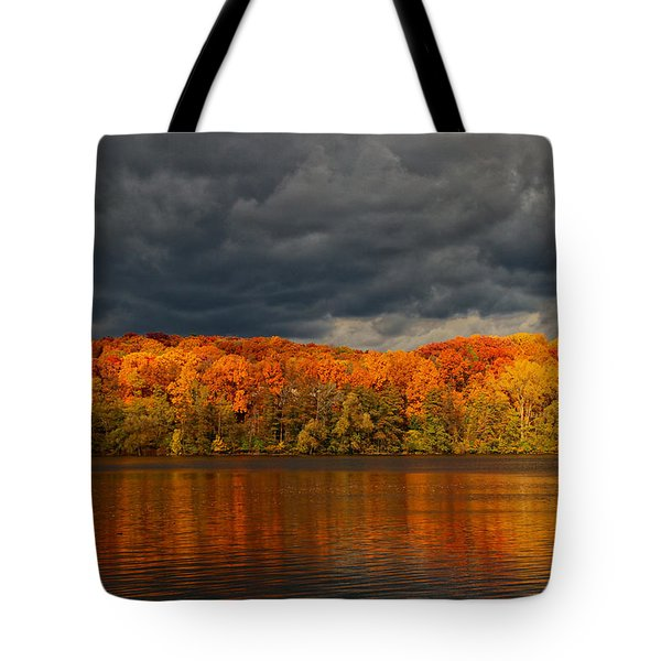 Storm  2 Tote Bag