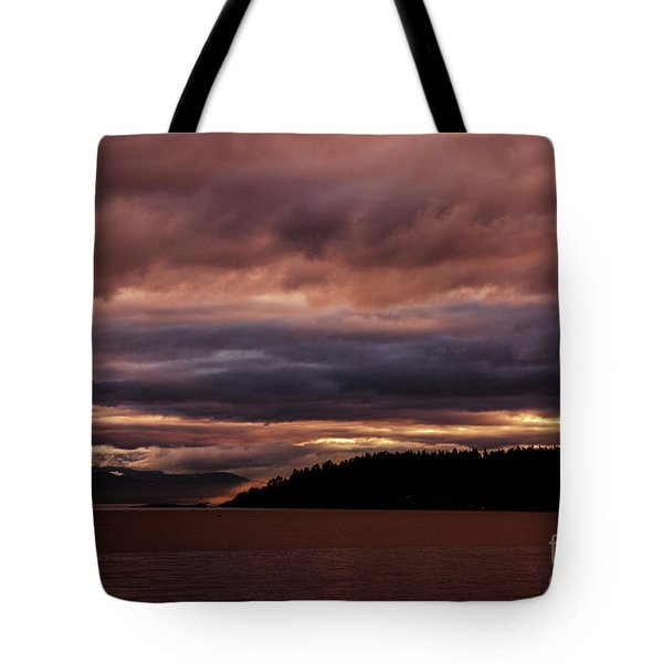 Storm 3 Tote Bag by Elaine Hunter