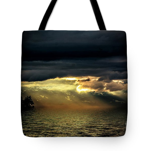 Storm 4 Tote Bag by Elaine Hunter