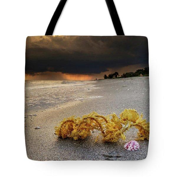 Storm And Sea Shell On Sanibel Tote Bag