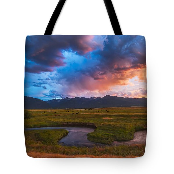 Storm At Prairie Creek Tote Bag