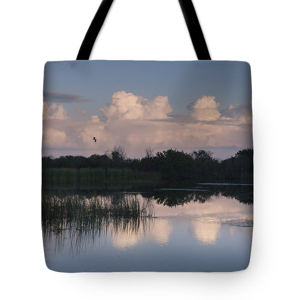 Storm At Sunrise Over The Wetlands Tote Bag