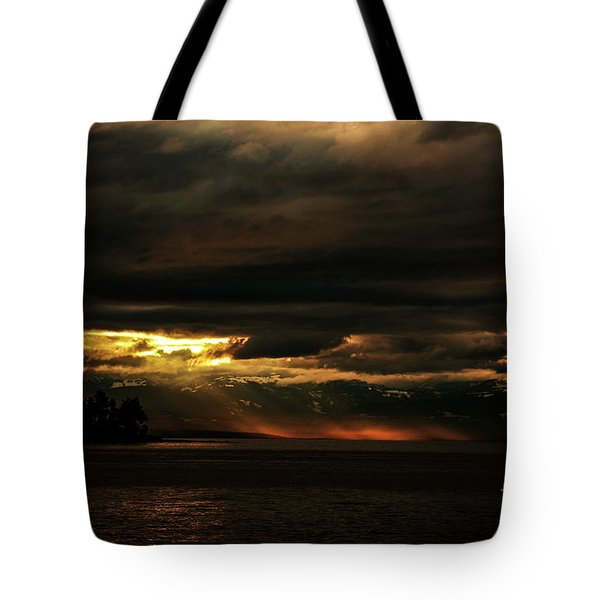 Storm Tote Bag by Elaine Hunter