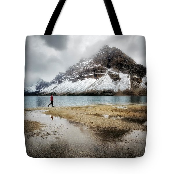 Storm Tracker Tote Bag by Nicki Frates