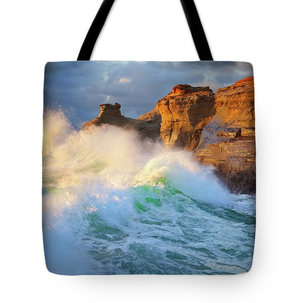 Tote Bag featuring the photograph Storm Watchers by Darren White