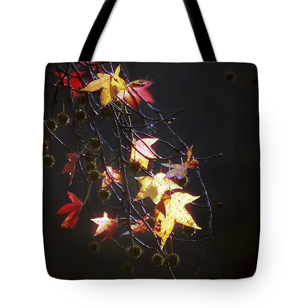 Storm's Bliss Tote Bag