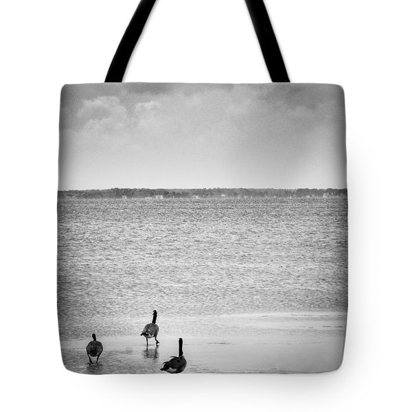 Canada Geese - Currituck Sound Tote Bag