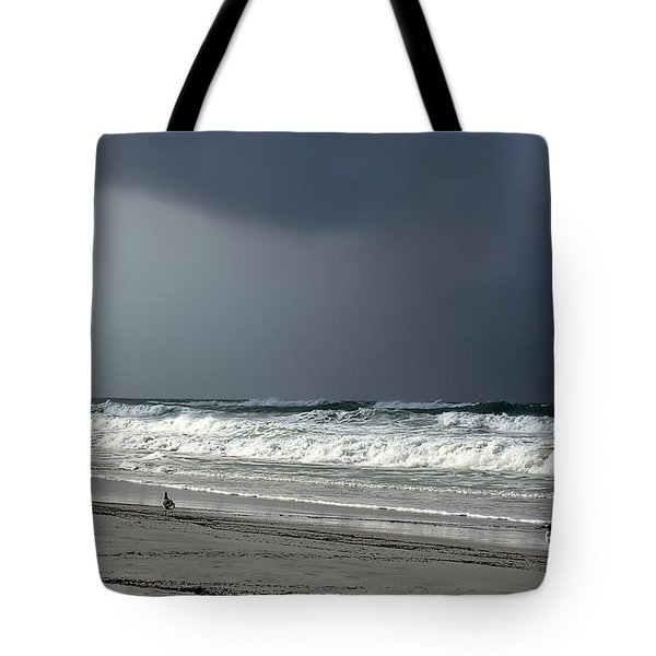 Tote Bag featuring the photograph Stormy by Debra Forand