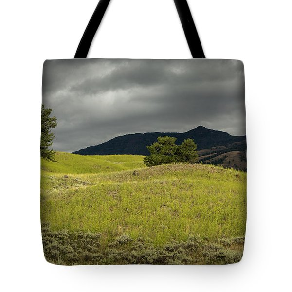 Stormy Fields Of Yellow Tote Bag