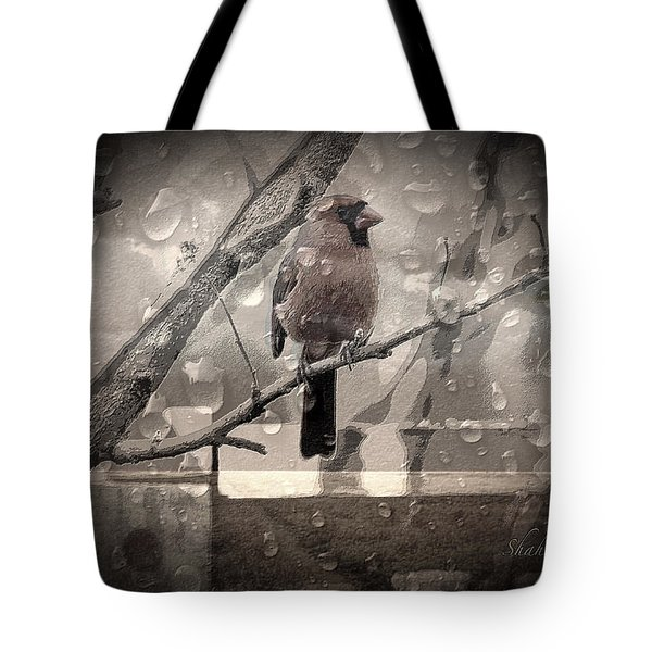 Stormy Window Tote Bag