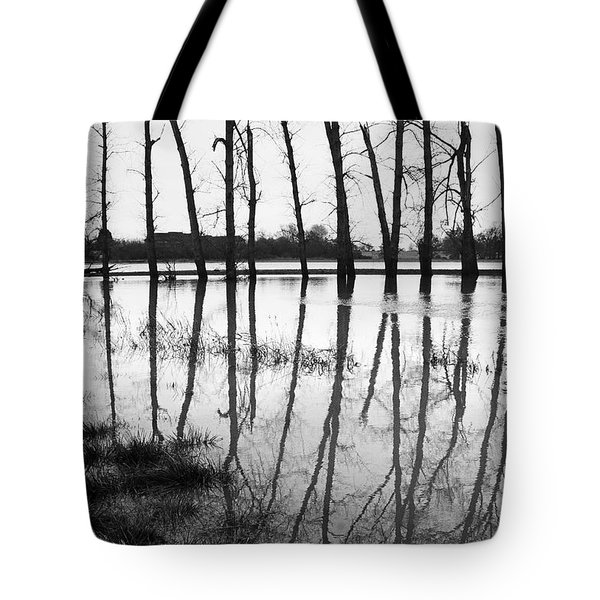 Stranded Trees II Tote Bag by Hazy Apple