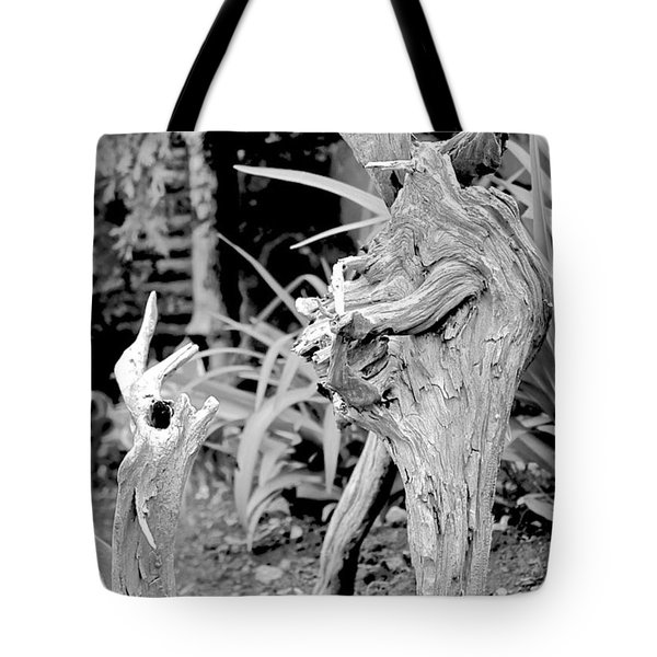 Strange Conversants Tote Bag