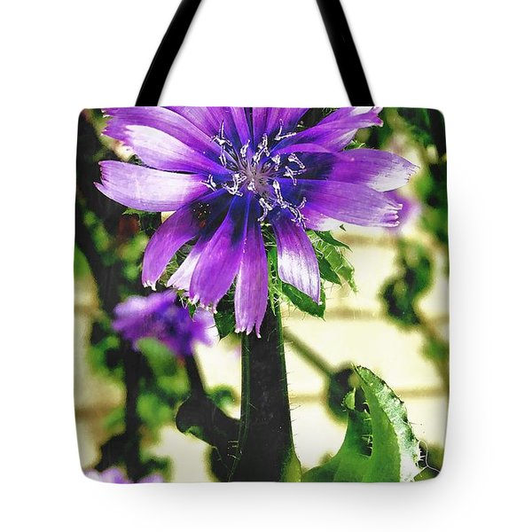 Strange Visitor Tote Bag