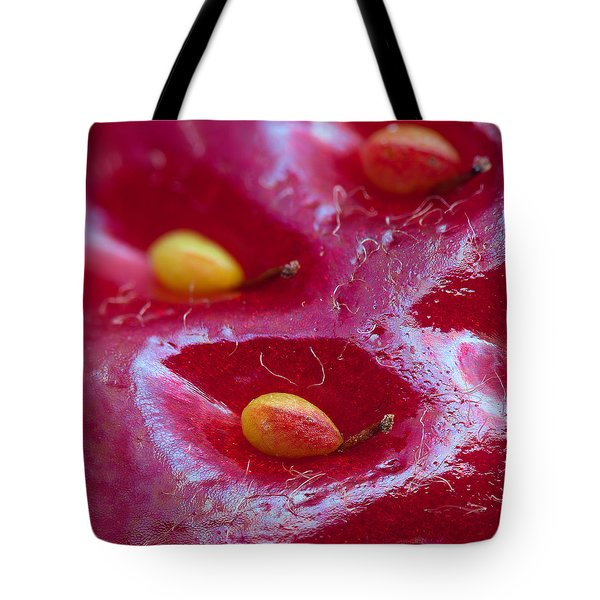 Tote Bag featuring the photograph Strawberry Fields by Alexey Kljatov