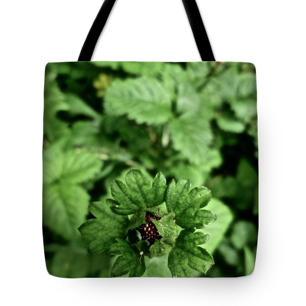 Strawberry Fields Forever Tote Bag by Tim Good